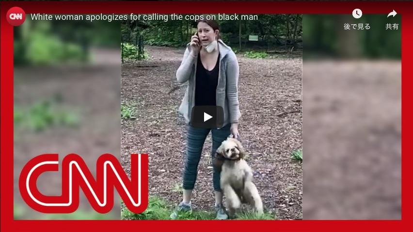 アメリカで犬の散歩トラブルの末通報